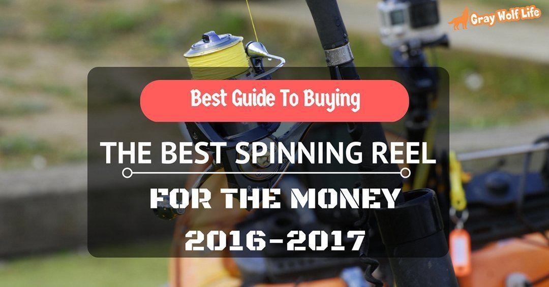 best spinning reel for the money