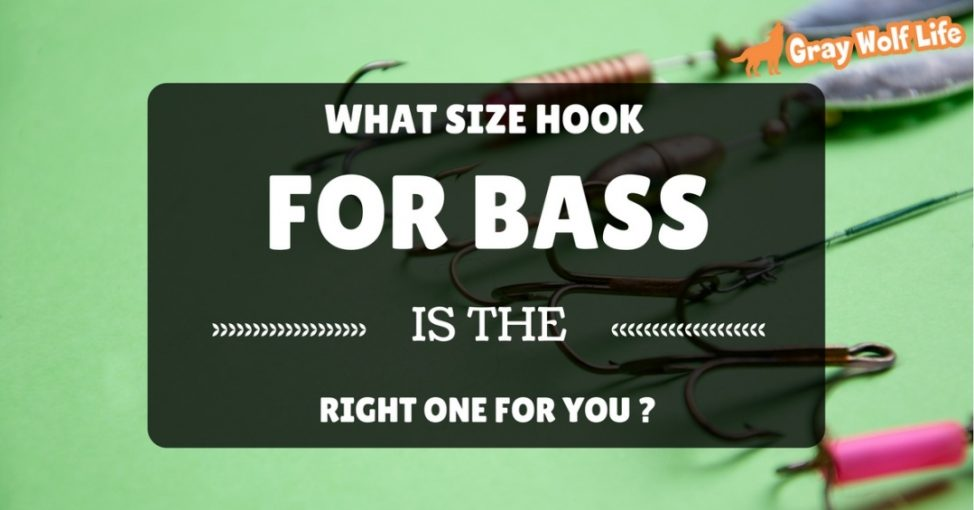 what size hook for bass