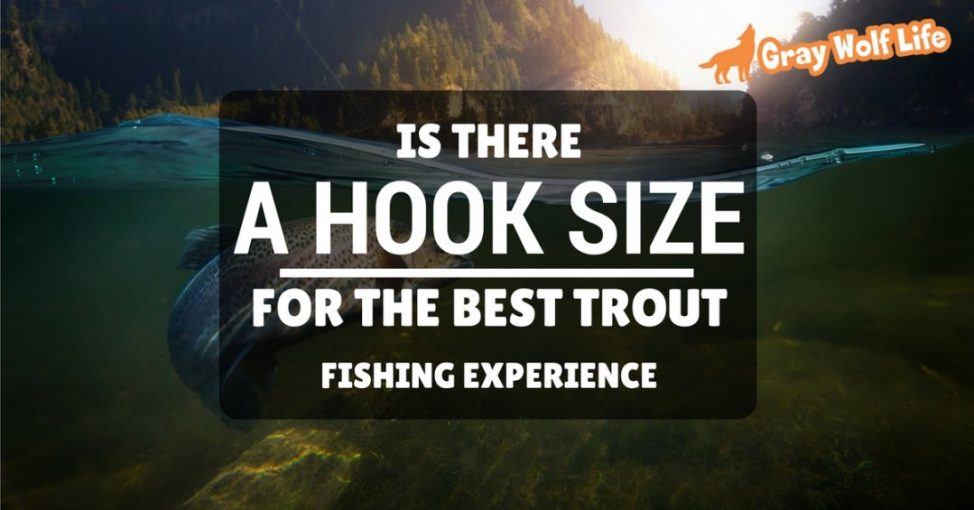 what size hook for trout