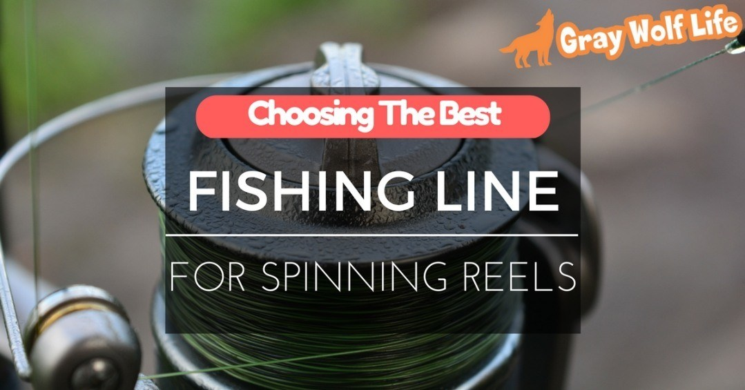 best fishing line-for spinning reels