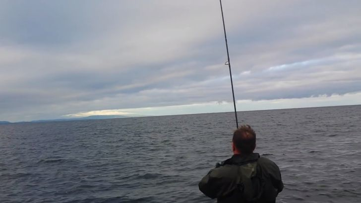 Reeling The Line