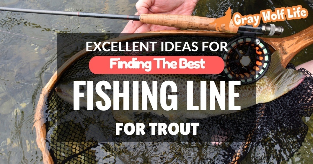 Excellent ideas for finding the best fishing line for for Good fishing line