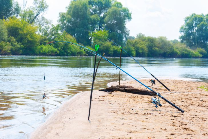 importance of fishing rod