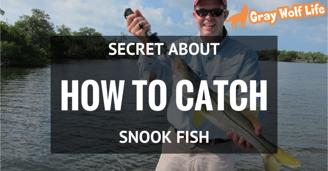 how to catch snook