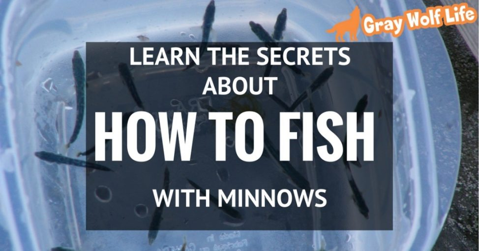 how to fish with minnows